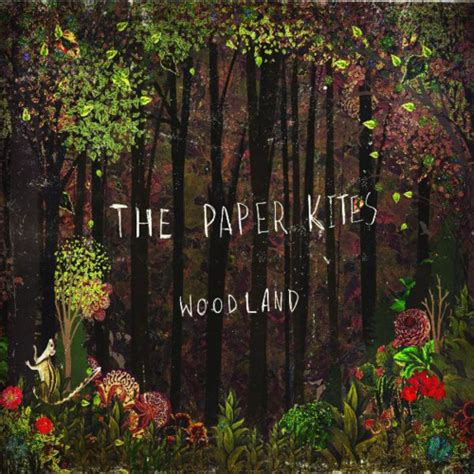 Vocer 3 1 Gb the paper kites bloom