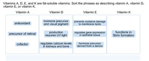 3 exles of healthy fats soluble vitamins functions best vitamin 2017