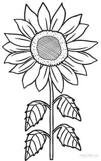sunflower coloring pages printable sunflower coloring pages for cool2bkids