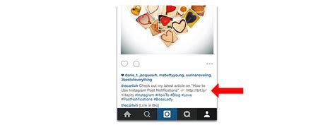 bio instagram link how to get the most reach on your instagram post carli