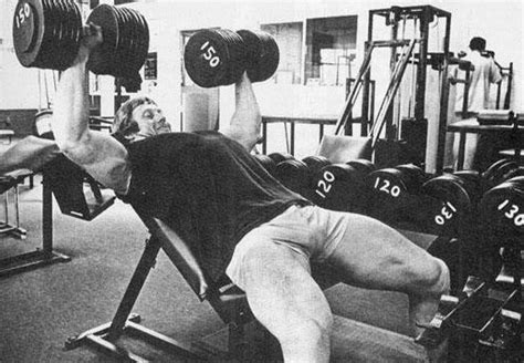 big john studd bench press the difference between amateurs and experts strength and