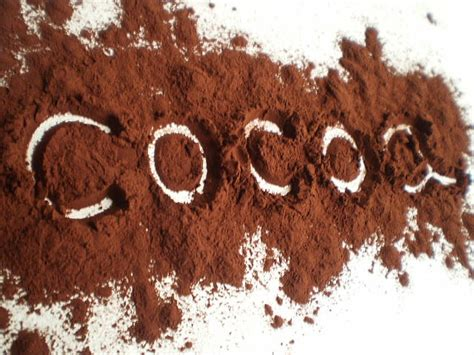 Powder Cocoa Coklat Powder cocoa the food of the gods healthy food house
