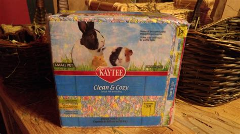 kaytee clean and cozy bedding rabbit roundup everything you need for your first bunny momstart