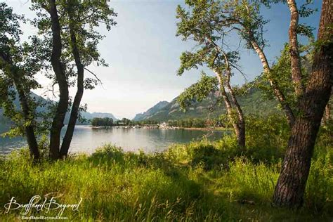 Cabins In Waterton National Park by Waterton Lakes National Park The Park Packed With