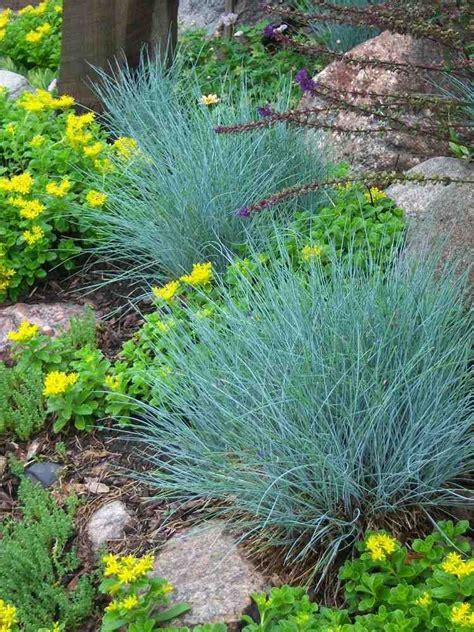 Comment Aménager Un Petit Balcon by Idee Amenagement Jardin Potager Guide Dtaill Et Plan