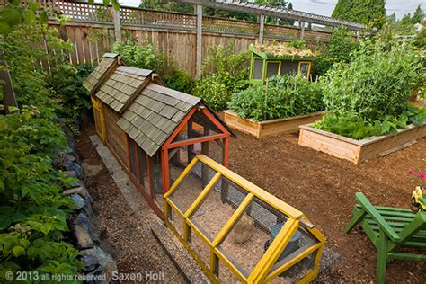 chicken coop in back of small space backyard organic