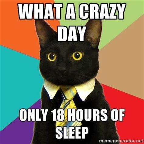 Buisness Cat Meme - the 10 best business cat memes cats vs cancer