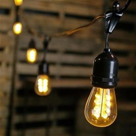 commercial edison drop string lights 50 warm white leds