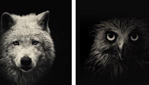 imagenes de vacaciones en blanco y negro 161 en blanco y negro retratan el quot lado oscuro quot de los