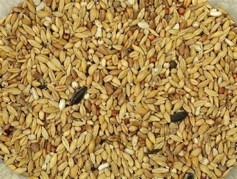 mixtura palomas depurativa vinci petfood alimento pajaros vinci petfood comida