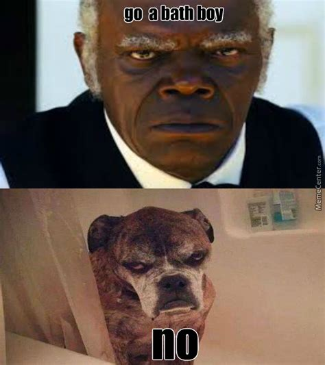 Samuel L Jackson Meme - samuel l jackson meme people who resemble animals