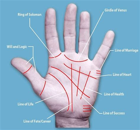 palm reading diagram japanese surgically alter their palm lines to change their