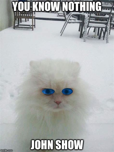White Walkers Meme - white walker kitty imgflip