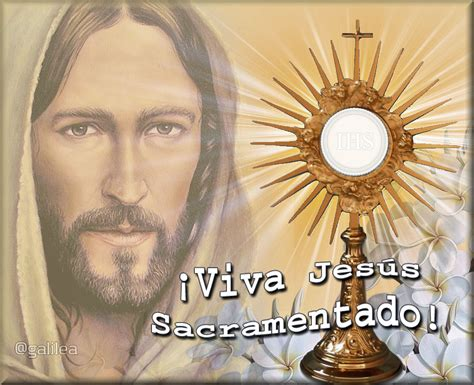 imagenes de jesus sacramentado en la custodia jes 250 s el tesoro escondido oraci 243 n a jes 250 s sacramentado