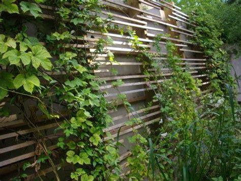 treillage bois jardin un treillage en bois moderne et facile 224 construire des poteaux et tasseaux de bois pour la