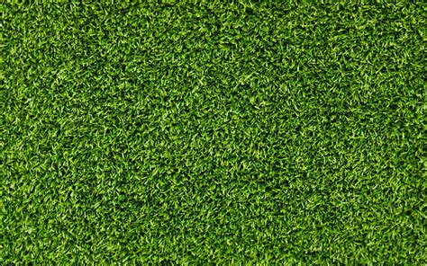 wallpaper hd green grass green grass texture hd wallpaper wallpaper list hq free