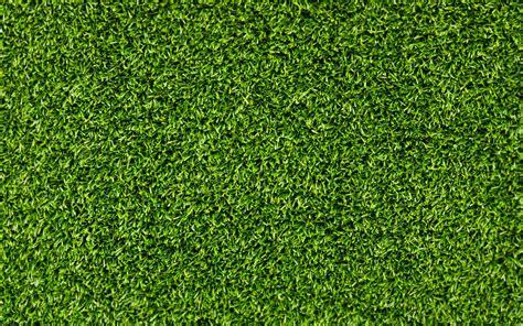 wallpaper of green grass green grass texture hd wallpaper wallpaper list hq free