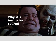 Why we love being scared: The science of fear - Video ... Arby S