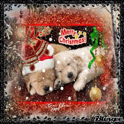 merry christmas puppies picture  blingeecom