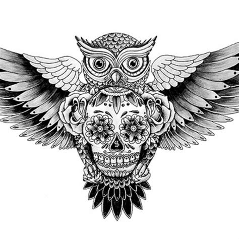 owl skull tattoo designs 20 owl skull tattoos designs