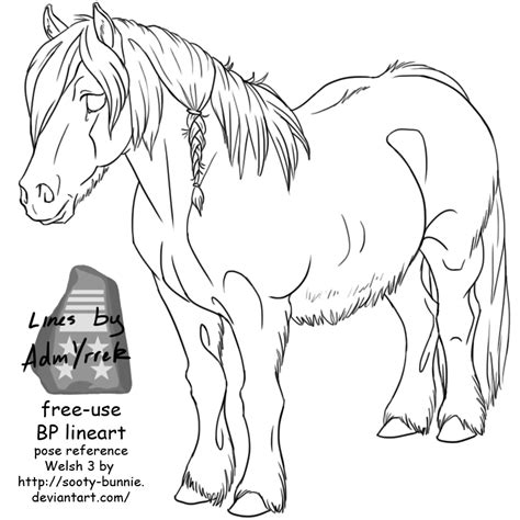 welsh pony coloring pages pin welsh pony colouring pages on pinterest