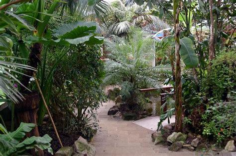 casa farfalle montegrotto giardino indoaustraliano della casa delle farfalle di