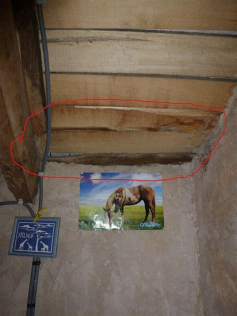 nid de frelons sous les tuiles nid de gu 234 pes sous toiture acc 232 s int 233 rieur