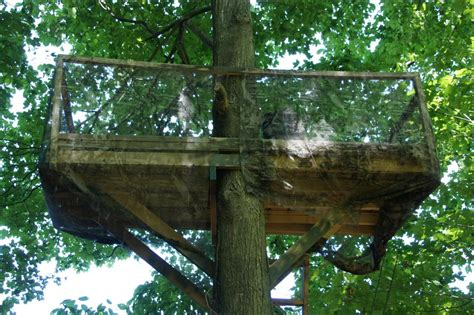 hunting tree house plans amusing hunting tree house plans images best idea home design extrasoft us