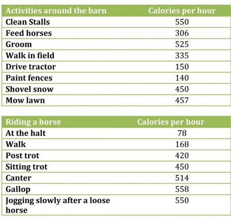 how many pony in a pound health benefits of stable equestrian