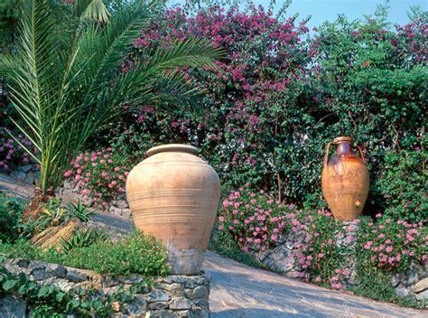 Aiuole Con Cicas by Giardini