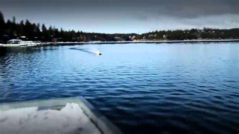 atomik 58 rc boat atomik racing catamaran 58 quot rtr electric boat youtube