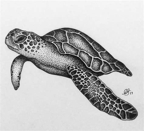 black tortoise tattoo sea turtle sketch tattoos