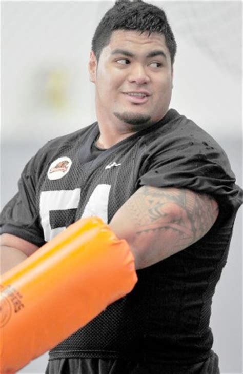 stephen paea bench youtube stephen paea bench press