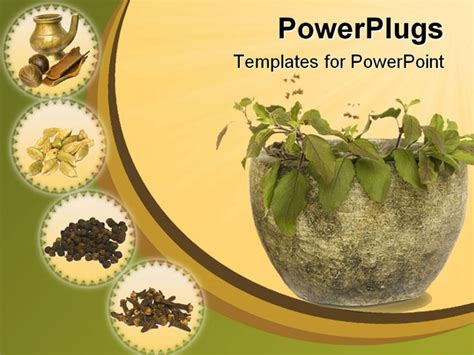 Holy Basil Tulasi In Stone Bowl With Spices And Oil Ayurveda Ppt Templates Free