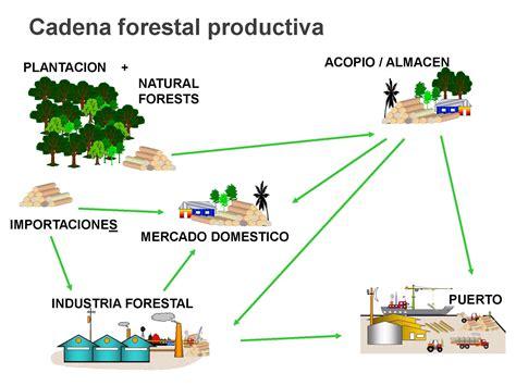 cadena productiva arroz sistema de trazabilidad y control de la cadena productiva