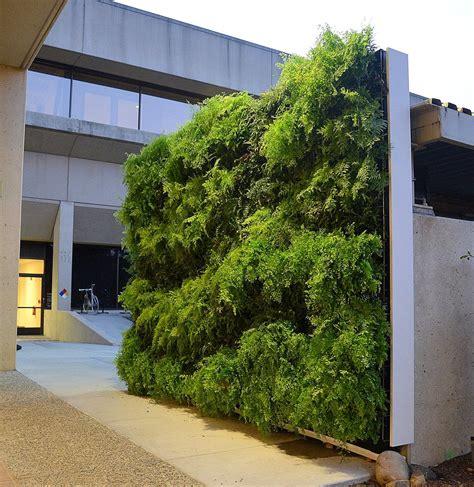 wall garden system florafelt pro system florafelt vertical garden systems