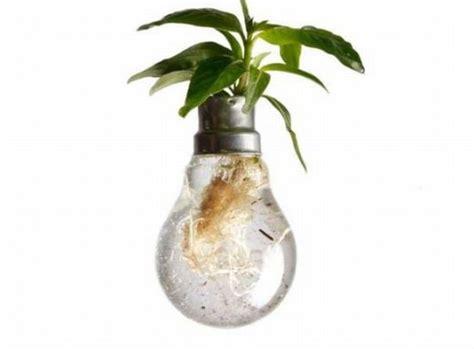 Flower Bulb Planter by Amazing Light Bulb Planters 27 Pics Izismile