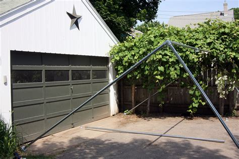 backyard grape vine trellis building a backyard grape vine trellis with pipe and wire