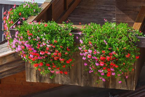 Blumenkästen Selber Bauen by Balkonkasten Halterung Selber Bauen 187 So Wird S Gemacht