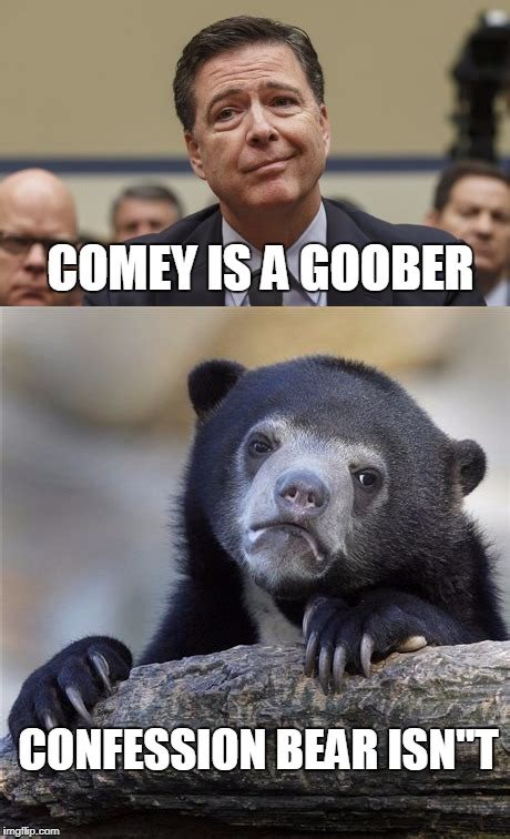 Meme Generator Confession Bear - the difference between comey and confession bear imgflip