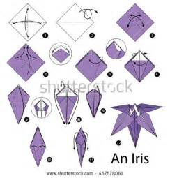 Origami Iris Flower Step By Step - stock images royalty free images vectors