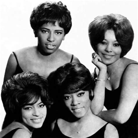 the chiffons introduction to the chiffons mental itch
