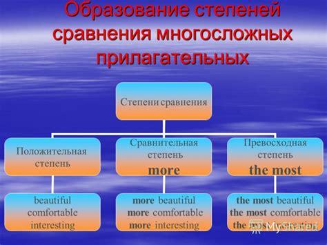 контрольный диктант на прилагательные 6 класс