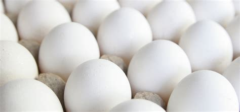 protein grams in eggs egg protein chart how many proteins does egg contain
