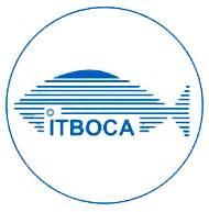 How To Create A itboca