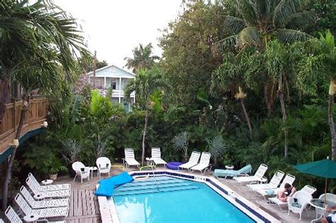 island house key west the pool seen from the bar picture of island house key west tripadvisor