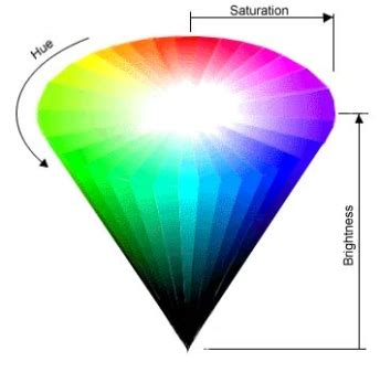 color cones exploring color terms as an anthropologist chapter 2