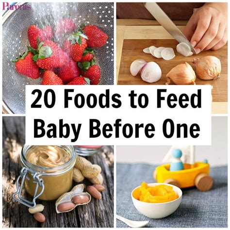 vegetables 1 year baby 1000 ideas about one year baby food on baby