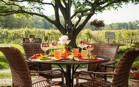 lakeside bed and breakfast chautauqua bed and breakfast vineyard lake erie views