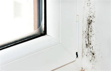 Was Tun Gegen Schimmel An Der Wand 3999 by Was Tun Gegen Leichten Schimmel An Der Wand An Boden Und
